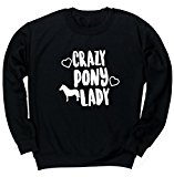 HippoWarehouse Crazy pony lady unisex jumper sweatshirt pullover